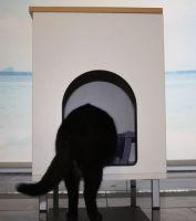 Nr. 1 Katzenklokommode weiß buche